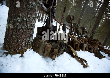 Gear from the Norwegian Telemark Battalion and their U.S. Marine counterparts are staged as camp is built for the - Stock Image