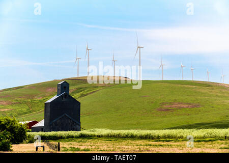 An old grain elevator with wind turbines in the background near Pomeroy, Washington State, USA. - Stock Image