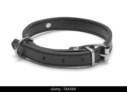 Small Black Leather Pet Collar Isolated on White Background. - Stock Image