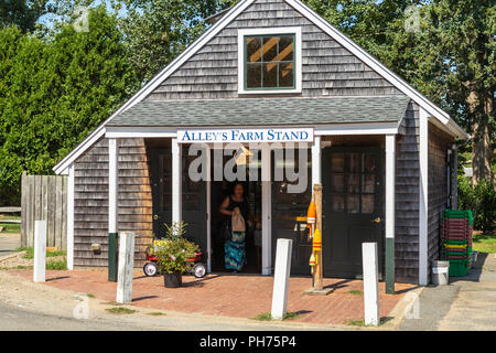A woman leaves historic Alley's Farm Stand after making a purchase in West Tisbury, Massachusetts on Martha's Vineyard. - Stock Image