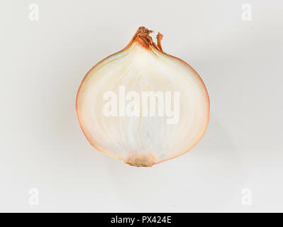 half an onion on a white background - Stock Image