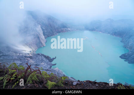 Night visitors at Ijen Volcano and Crater, Java, Indonesia - Stock Image