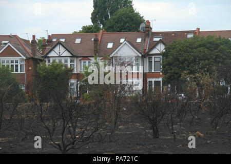 Wansted Flats, UK: 20 July 2018: Resdidential flats on Lake House Rd seen from the churred Wanstead flats, the scene of the July 15th fire where around the area of 100 football pitches was burnt on the tinder-dry flats. 225 firefighters and 40 fire engines tackled the blaze in what has been described as the largest grass fire ever seen in the capital. Credit: David Mbiyu/ Alamy Live News - Stock Image