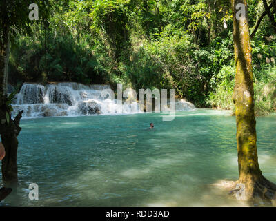 Cascade in part of three tiered Tat Kuang Si Waterfalls in Kuang Si Waterfalls Park  near Luang Prabang Laos Asia tourist swimming in clear water pool - Stock Image