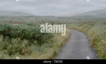View of Abbotts Lagoon from a distance, Point Reyes National Seashore, Marin County, California, USA,  on a foggy day  and cloudless sky from the begi - Stock Image