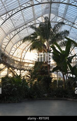 Glasgow, Scotland, UK. 28th, December, 2018. The sun sets on the 'Winter Gardens' as it prepares for closure this weekend and faces an uncertain future with many millions of pounds required to repair, make safe and restore it's crumbling structure. - Stock Image