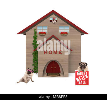average middle class pug dog familiy, sitting down in garden with house sold sign at new home, isolated on white background - Stock Image