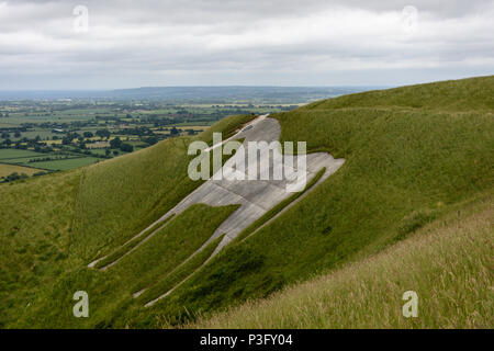Westbury white horse looking grey and dingy in need of a clean up. - Stock Image