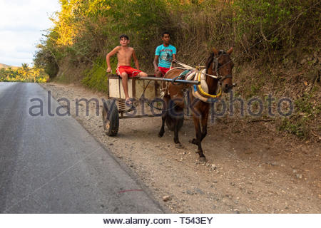 Two teenage boys driving a horse drawn cart by in the side of a rural road.  Lifestyles in the Caribbean island. - Stock Image