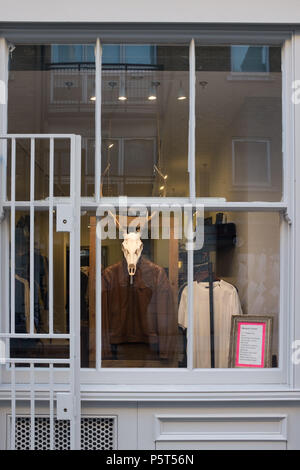 Shop Front for Designer Clothes Store, with Interesting display including Animal Skull in the Window, Hackney, London, England, UK. - Stock Image
