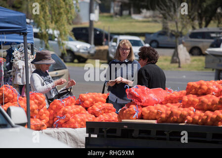 Oranges for sale at a weekend farmer's local market at the village of Cargo between Orange and Canowindra in New South Wales' Central West, Australia - Stock Image