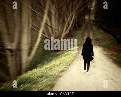 Woman walks along woodland track. - Stock Image