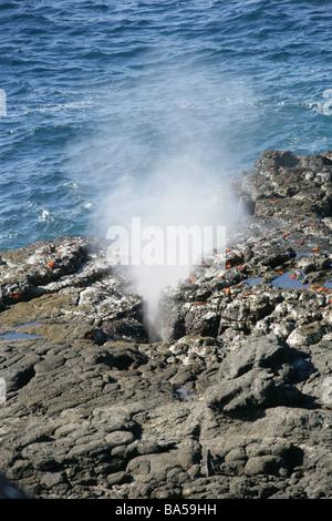 Blow Hole in Rocks, Punta Suarez, Espanola Island, Galapagos Islands, Ecuador, South America - Stock Image
