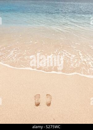 Footprints in the sand. Tavarua, Fiji. - Stock Image