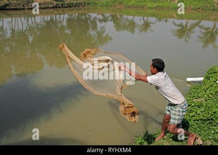 BANGLADESH Farid Pathang using a net to catch fish from his pond, Garo tribal minority, Haluaghat, Mymensingh region photo by Sean Sprague - Stock Image