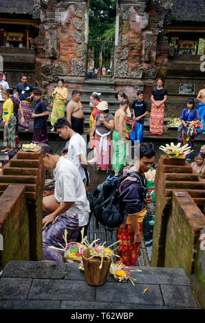 Pura Tirta Empul, Balinese and tourists in the holy waters, Ubud, Bali, Indonesia - Stock Image