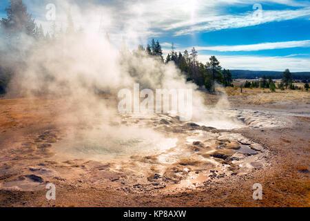 Yellowstone thermal area, Upper Geyser Basin, Yellowstone National Park, Wyoming, USA - Stock Image