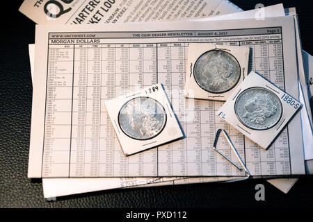 Coin collector desk - Pricing them out - Greysheet with Morgan Dollars - Stock Image