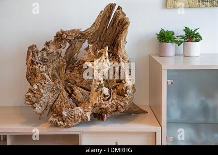 The modern wood decorative oak sculpture. - Stock Image