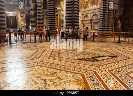 People looking at the marble floor mosaics, in the interior of Siena Cathedral ( Duomo Siena ), Siena, Tuscany Italy Europe - Stock Image