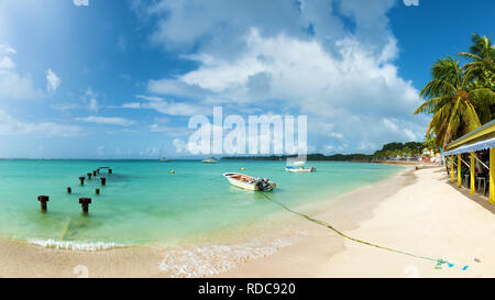 Saint Anne beach, Guadeloupe, French West Indies, panoramic view. - Stock Image