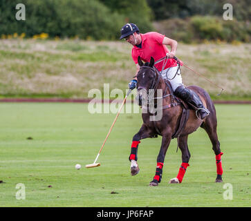 Leadenham Polo Club, Lincolnshire, England- A polo match being played on a shot summers afternoon - Stock Image
