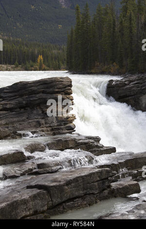 Beautiful power of surging water and visible layers of rock at Athabasca Falls in Jasper National Park, Alberta, Canada, in vertical image with copy s - Stock Image