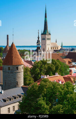 Tallinn summer city, view across the towers and rooftops of the medieval Lower Town area of Tallinn with St Olaf's Church on the skyline, Estonia. - Stock Image