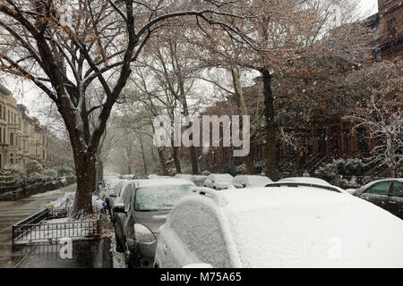 Snow covered cars parked on tree lined street in Brooklyn, New York. - Stock Image