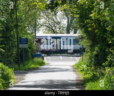 Train passing over level crossing through trees Milton Cambridge 2019 - Stock Image