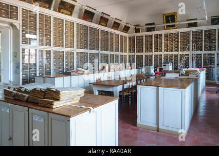 The Botanical Museum of Florence, Italy has one of the largest plant collections in the world. The 19c Webb Herbarium contains over 300,000 specimens - Stock Image