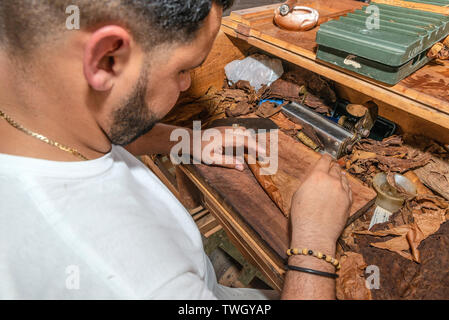 Cigar roller or torcedero making cigars in the town of Vinales, Pinar Del Rio Province, Cuba, Caribbean - Stock Image
