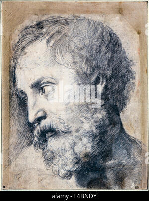 Raphael, Head of An Apostle in the Transfiguration, drawing, c. 1519 - Stock Image