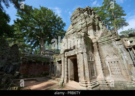 Ta Prohm ruins in Angkor Wat. The Angkor Wat complex, Built during the Khmer Empire age, located in Siem Reap, Cambodia, is the largest religious monu - Stock Image