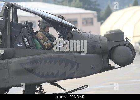 A U.S. Army AH-64E Apache pilot assigned to 1-229th Attack Reconnaissance Battalion, 16th Combat Aviation Brigade, 7th Infantry Division prepares to depart from Joint Base Lewis-McChord, Wash., for the National Training Center Jan. 9, 2016. The Soldiers and aircraft will participate in training with other units from 7th Infantry Division to prepare for future missions. (U.S. Army photo by Capt. Brian Harris/Released) - Stock Image