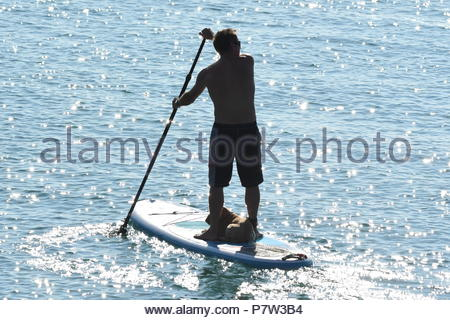 Worthing, UK. Sunday 8th July 2018. A man takes a dog on a paddleboard early this morning in Worthing, on the South Coast. Credit: Geoff Smith / Alamy Live News. - Stock Image