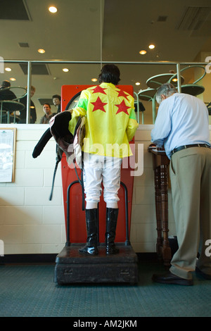 Horse Racing Track Canterbury New Zealand - Stock Image