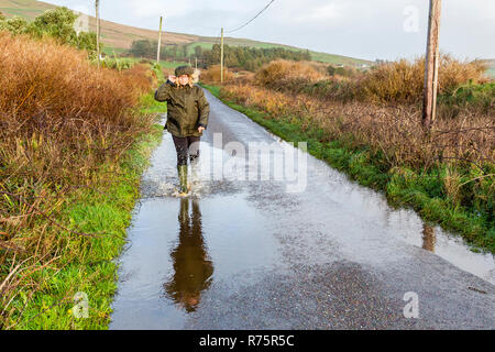 Woman splashing in puddle in high winds on county lane in County Kerry Ireland - Stock Image