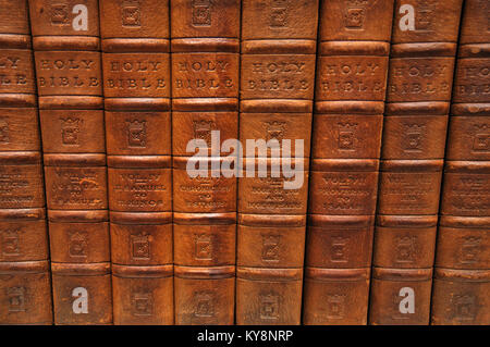 Row of spines from several volumes of the Holy Bible. From the Reed Rare Books Collection in Dunedin, New Zealand. - Stock Image