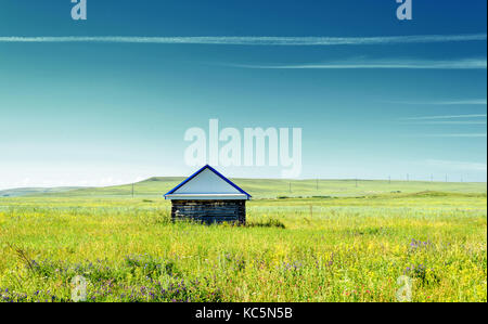 Single rustic log cabin in a field with lush green wild grasses and a blue summer sky with vapor trails - Stock Image