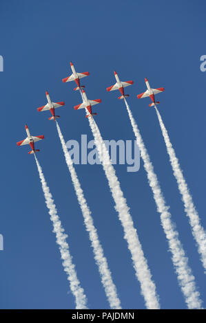 CASA C-101EB Aviojets of Spain - Air Force Patrulla Acrobatica Aguila flying in formation with smoke at Dubai AirShow 2007 - Stock Image
