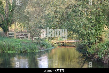A bucolic scene beside the River Itchen on the outskirts of Winchester. Winchester, Hampshire, UK. - Stock Image