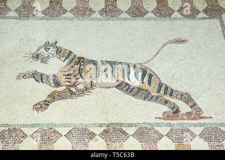 Mosaic depiction of a tiger, House of Dionysos, Paphos Archaeological Park, Paphos, Cyprus - Stock Image