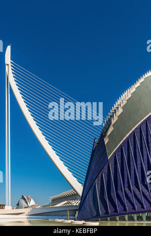 VALENCIA, SPAIN - AUGUST 07: El Pont de l'Assut de l'Or and L'Àgora in the City of Arts and Sciences - Stock Image
