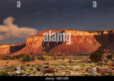Red rock formations, sunrise near Torrey, Utah, USA - Stock Image