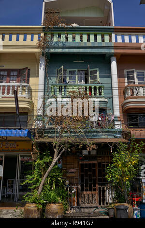 Climbing plant rising from a ground level pot to cover a three floor building - Stock Image