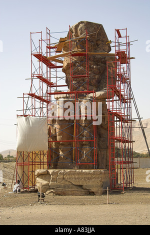Colossus of Memnon Luxor Thebes Egypt Africa Undergoing Renovation 2006 - Stock Image