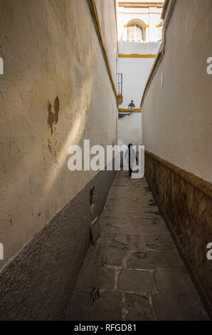 Woman walking up narrow alley en Seville old centre, Seville, Andalusia Spain. - Stock Image