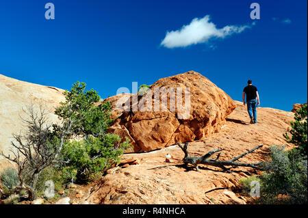 Lone male hiker walking on Upheaval Dome Overlook trail, Canyonland National Park, Utah, USA. - Stock Image