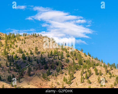 Okanagan landscape view, seen from Nk'mip Resort and Conference Centre, Osoyoos BC Canada. - Stock Image